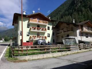 Foto - Appartamento all'asta frazione San Bernardo 17, Rabbi