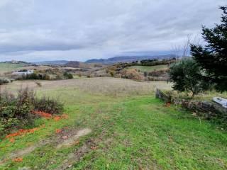 Foto - Terreno agricolo in Vendita a San Severino Marche