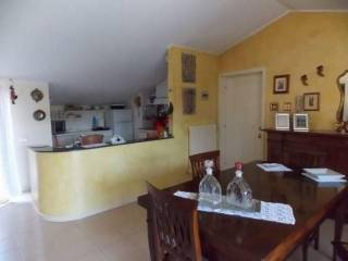 Photo - 3-room flat Magenta, Martinsicuro