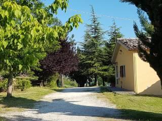 Foto - Villa unifamiliare, buono stato, 160 mq, Castel Cavallino, Urbino