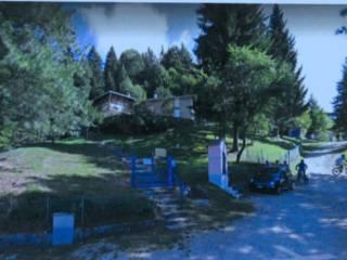 Foto - Villa unifamiliare Strada Provinciale di Croce d'Aune, Sovramonte