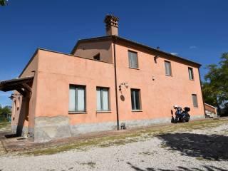 Foto - Casa colonica Strada Piane Tronto, Ancarano