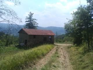Photo - Country house Località Moglione, Gottasecca