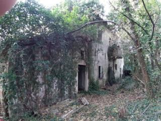 Foto - Rustico, da ristrutturare, 430 mq, Gabicce Mare