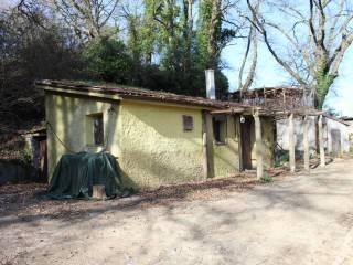 Foto - Terreno agricolo in Vendita a Vitorchiano