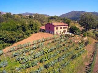 Foto - Rustico via statale radici, Castiglione di Garfagnana