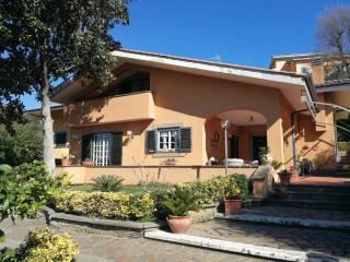 Photo - Two-family villa via Fontanile del Piscaro 41, Frascati