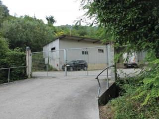 Foto - Laboratorio, laboratorio all'asta Contrada Aso 98, Montefiore dell'Aso