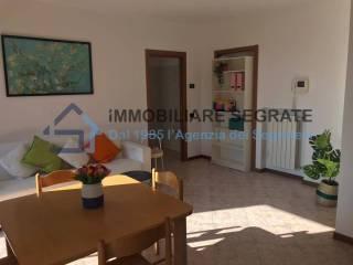 Radaelli Arredobagno Sas Di Radaelli Giorgio C.Case E Appartamenti Via Radaelli Segrate Immobiliare It