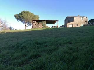 Foto - Casale, buono stato, 200 mq, Vitorchiano