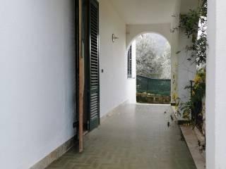 Foto - Villa unifamiliare viale Consiglio, Terrasini