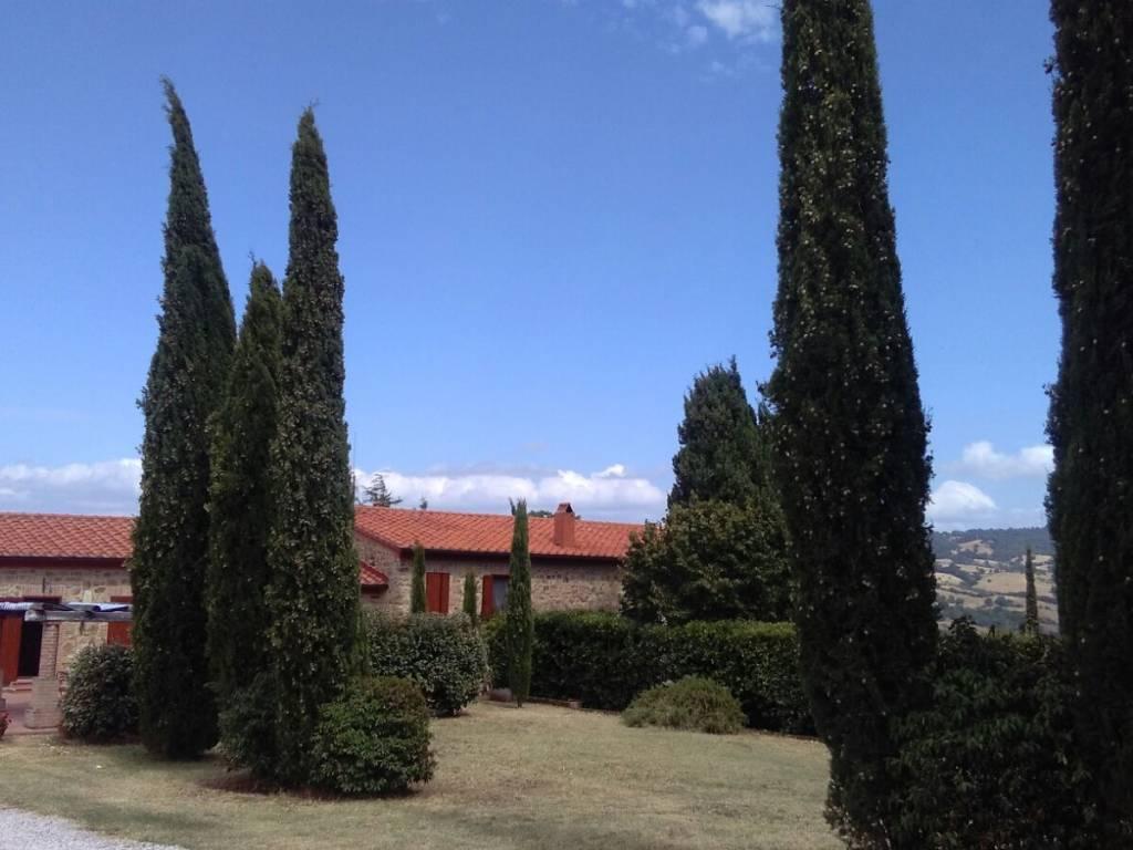 Panoramica - VENDESI CASALE IN PIETRA CON PISCINA IN MAREMMA