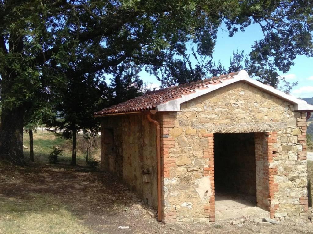 Casa del Toro - VENDESI CASALE IN PIETRA CON PISCINA IN MAREMMA