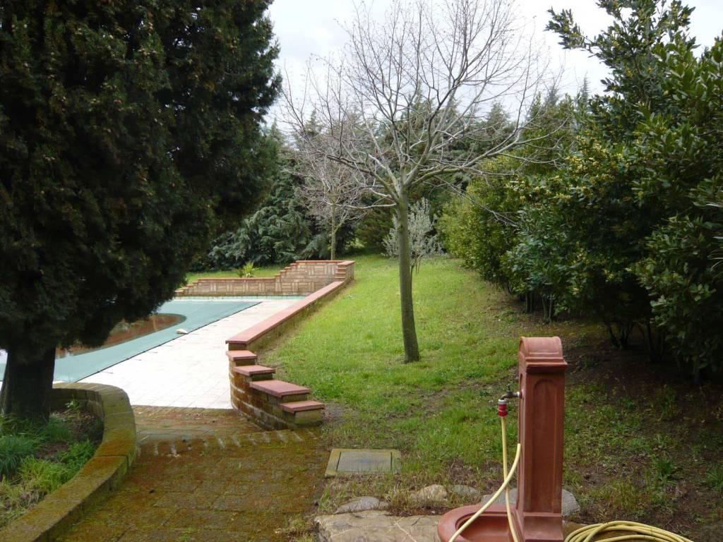 Intorno piscina - VENDESI CASALE IN PIETRA CON PISCINA IN MAREMMA