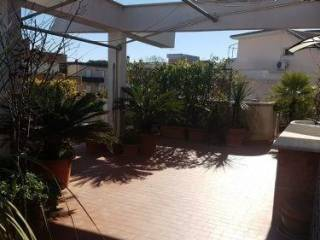 Photo - 2-room flat via tanaro, Nettuno