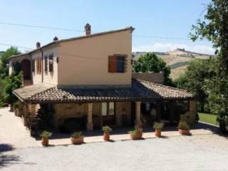 Photo - Country house Strada contrada collemorino, 30, Pineto