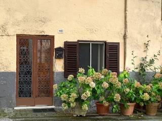 Foto - Bilocale piazza Sant'Egidio, Montevirginio, Canale Monterano