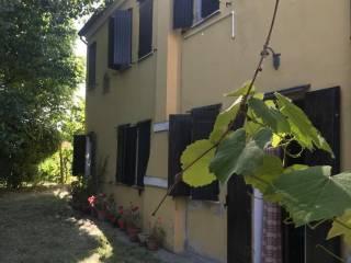 Foto - Casa colonica via Antonio Zanon 592, Bosaro