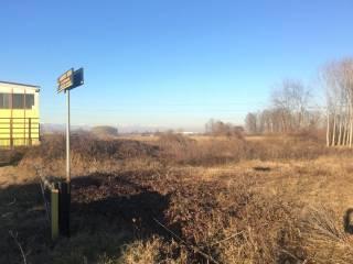 Foto - Terreno agricolo in Vendita a Airasca