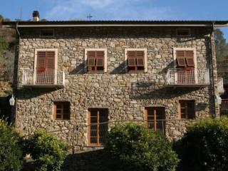 Foto - Casale via Provinciale 44, San Biagio della Cima