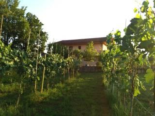 Foto - Villa unifamiliare, da ristrutturare, 350 mq, Ceprano