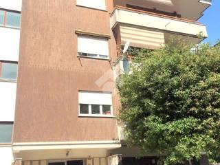 Photo - 3-room flat good condition, Velletri