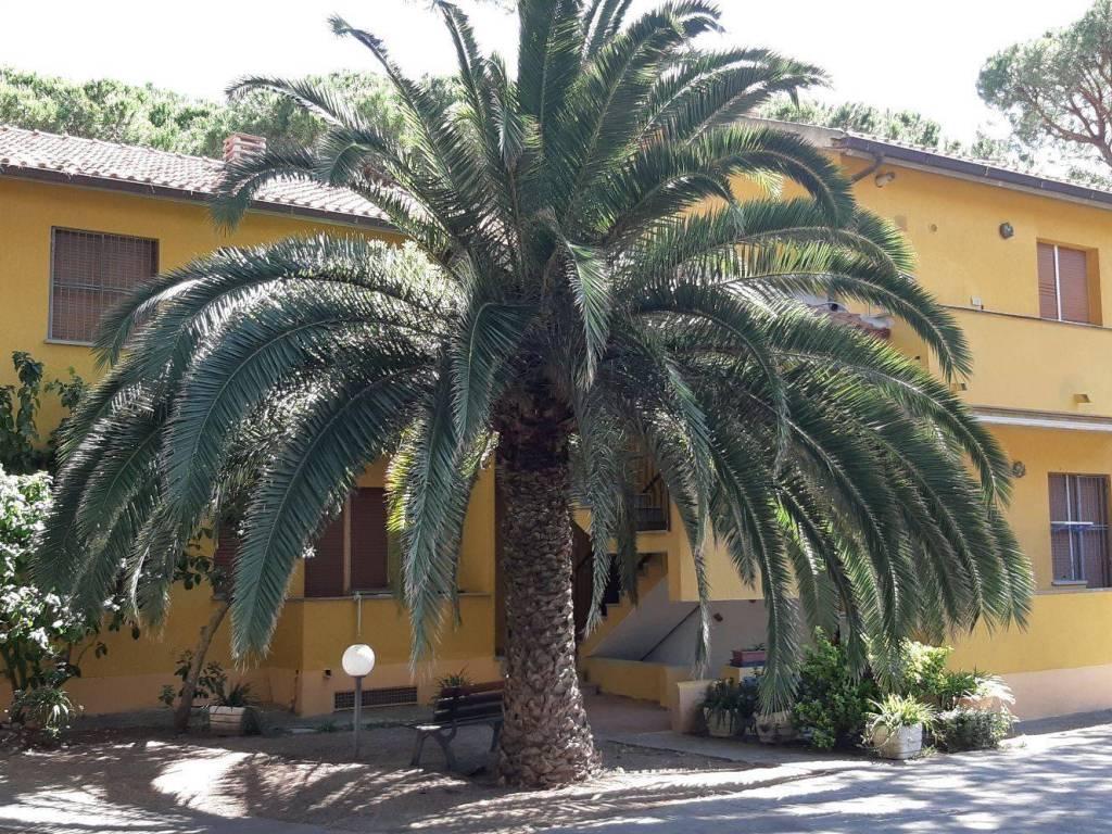 Vendita Appartamento Castiglione della Pescaia. Trilocale ...