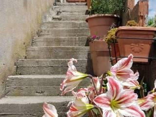 Foto - Wohnung via Massa Prato, Maratea
