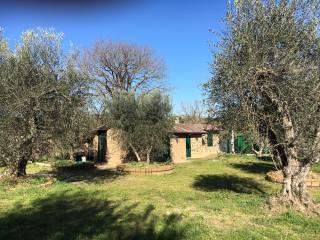 Foto - Casale, buono stato, 80 mq, Castiglione in Teverina