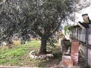 Foto - Terratetto unifamiliare 85 mq, buono stato, Sant'Angelo a Cupolo