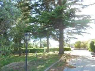 Foto - Villa bifamiliare, buono stato, 280 mq, Chiusano di San Domenico