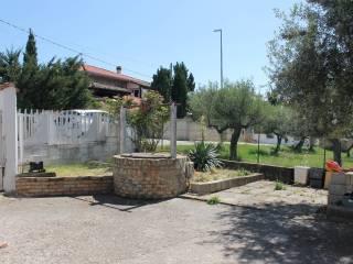 Photo - Apartment Contrada San Rocco, Collecorvino