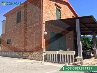 Foto - Villa unifamiliare, da ristrutturare, 160 mq, Montegrosso - Boschetto, Andria