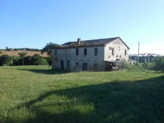 Foto - Casa colonica via Miralbello, San Lorenzo in Campo