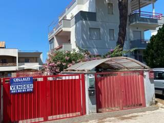 Photo - 2-room flat via dei Ciclopi 5, Santa Teresa, Anzio