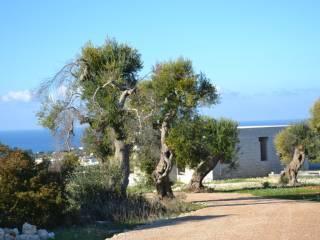 Foto - Villa unifamiliare Strada Vicinale Cupasce, Castrignano del Capo