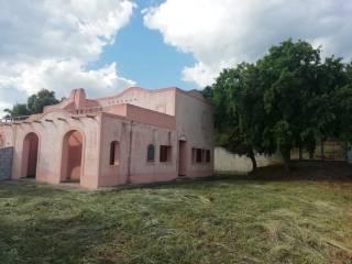 Foto - Villa bifamiliare viale Caravaggio 224, Baia del Carpino, Petrosa, Piano Grande, Scalea