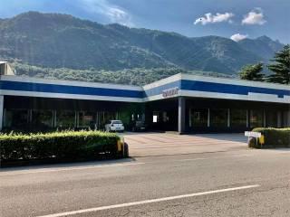 Immobile Vendita Casale Corte Cerro