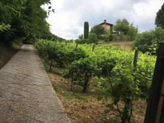Photo - Single family villa Località Madonna di Loreto 41, Tarzo