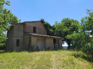 Foto - Casale Strada Provinciale Trevinanese, Trevinano, Acquapendente