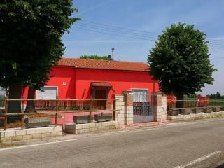 Foto - Trilocale ottimo stato, piano terra, Castelmassa