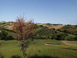 Foto - Casale, buono stato, 240 mq, Tortoreto