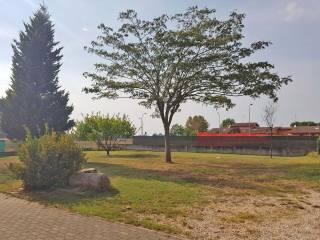 Φωτογραφία - Μονοκατοικία βίλα, καλή κατάσταση, 250 τμ, Polesine, Pegognaga