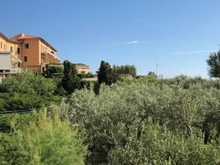 Foto - Quadrilocale buono stato, primo piano, Antignano - Banditella, Livorno
