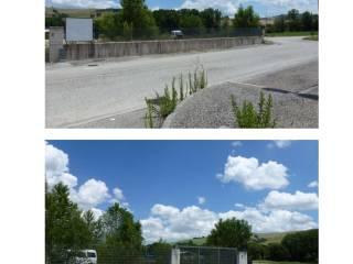 Foto - Terreno agricolo all'asta Località Taccoli, San Severino Marche