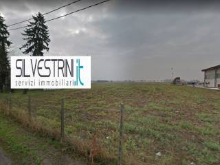 Foto - Terreno agricolo all'asta via Alberetto, Salizzole