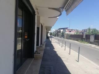 Immobile Affitto Sant'Arpino