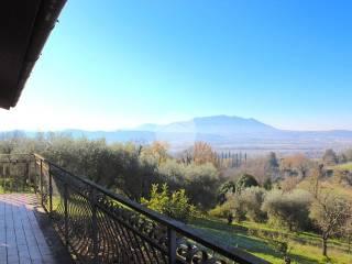 Foto - Villa bifamiliare via collenero 19, Forano