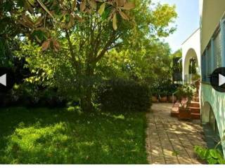 Foto - Villa unifamiliare via Provinciale Regina Elena, Barano d'Ischia