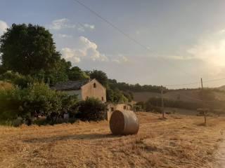 Foto - Casale Contrada Solagna 20, Petritoli